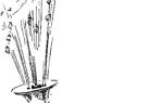 Как называется труба незнайки