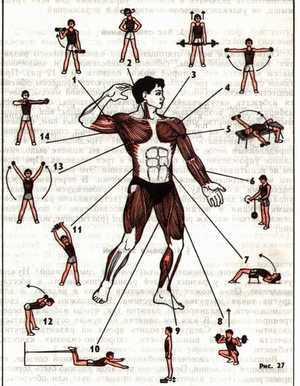 Тренировки с трубчатым эспандером для мужчин