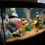 Декорации из труб в аквариум