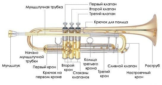 Как называется труба гармошка